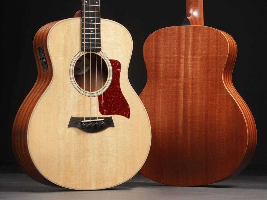 Product Review Taylor Guitars GS Mini E Bass